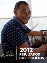 Capa_resultados 2012