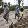 BrazilFoundation Associação dos Pequenos Agricultores da Comunidade de Lagoa da Baixa Projeto social ONG