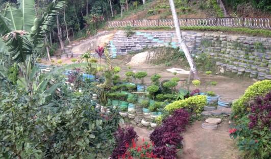 Parque Sitie BrazilFoundation Edital 2016 INSTITUTO ESPAÇO SITIÊ DE MEIO AMBIENTE, ARTES E TECNOLOGIA ONG Projeto Social Rio de Janeiro agricultura urbana sustentabilidade Vidigal reflorestamento