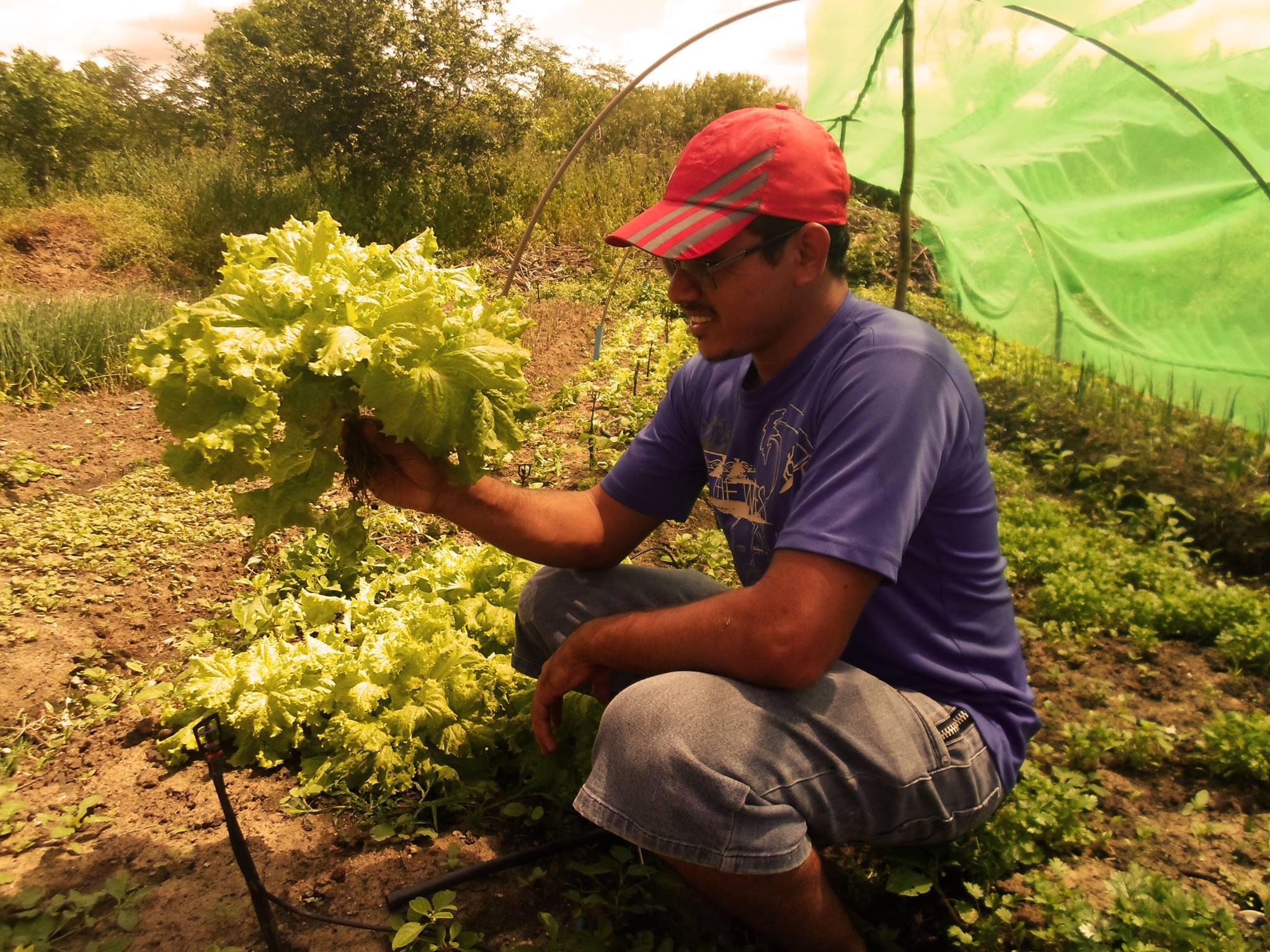 Rede Local de Producao Agroecologica e Hortalicas BrazilFoundation