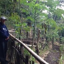 BrazilFoundation Parque Sitie 2016 Grantee Vidigal