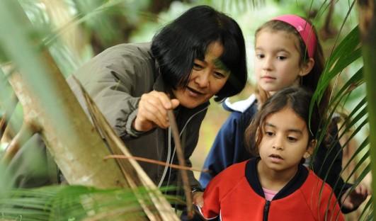 BrazilFoundation Edital 2017 Project Instituto Rã Bugio Jaraguá do Sul Santa Catarina ONG Pojeto Social Social Project Educação Ambiental Meio Ambiente Fossas Sépticas Esgoto