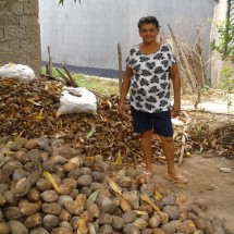 Associação De Quebradeiras de Coco e Trabalhadores Rurais de Augustinópolis