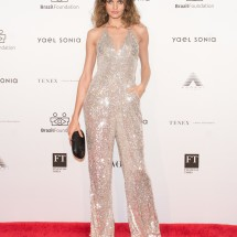 Barbara Fialho BrazilFoundation XVI Gala New York Celebrating the Amazon Plaza