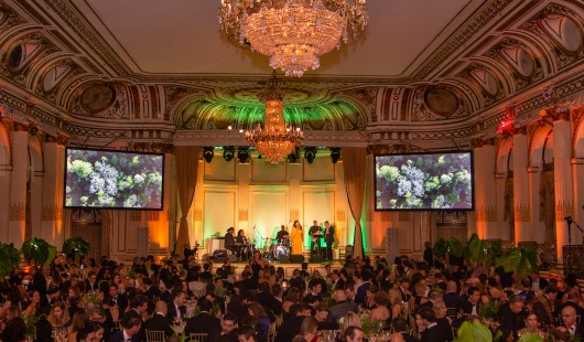 2018 XVI BrazilFoundation Gala NY Celebrating the Amazon The Plaza