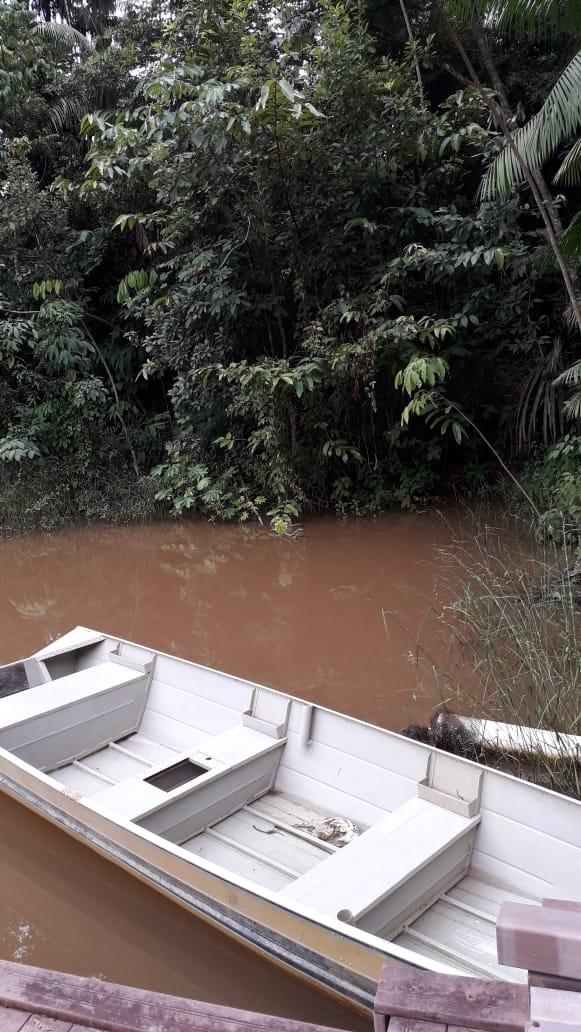 Rondonia Visitas BrazilFoundation Edital 2019