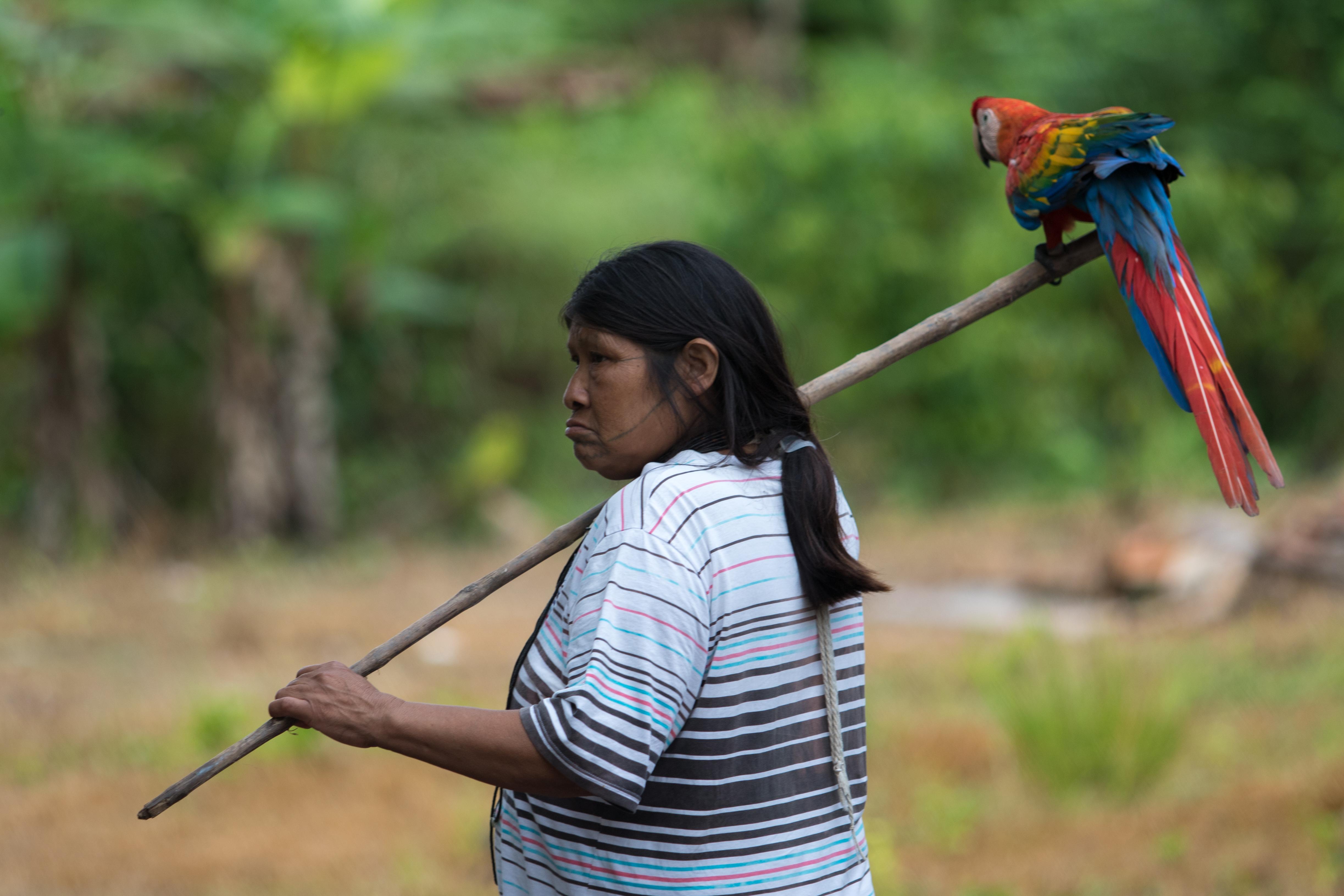 Associação Kanindé BrazilFoundation Amazônia Filantropia Philanthropy