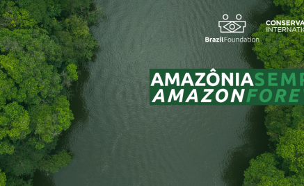 Amazonia BrazilFoundation Brasil